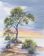 Beach Pine , hand painted LandMark by Donna Peters