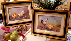 Suggested framing for Chickens